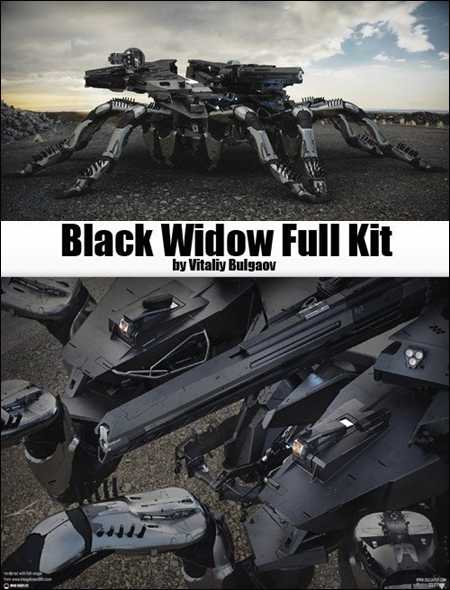 Max  Black Widow Full Kit
