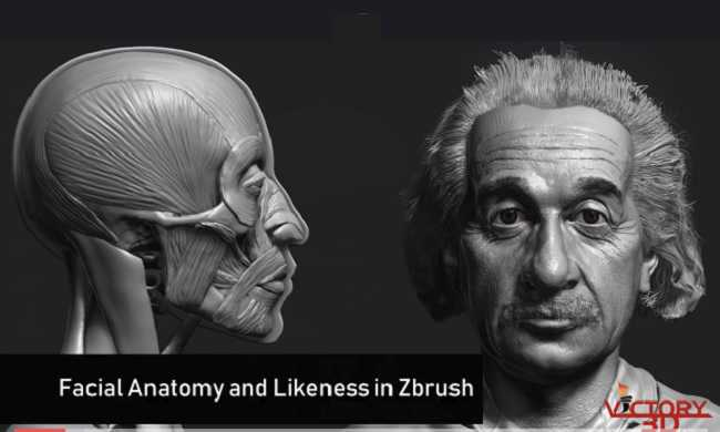 Udemy – Zbrush Facial Anatomy and Likeness Character Sculpting