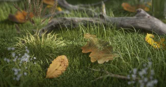 Gumroad – Leaves Shaders Pack #1 by Alexandre G