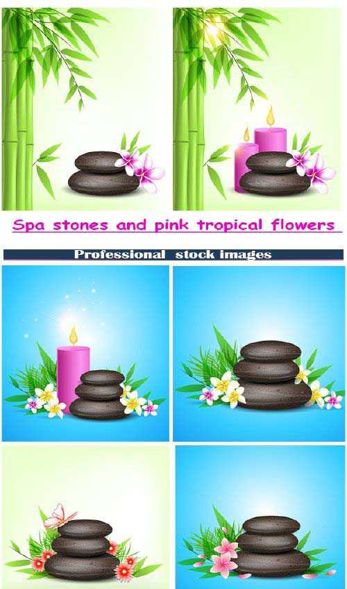 Spa stones and pink tropical flowers 3