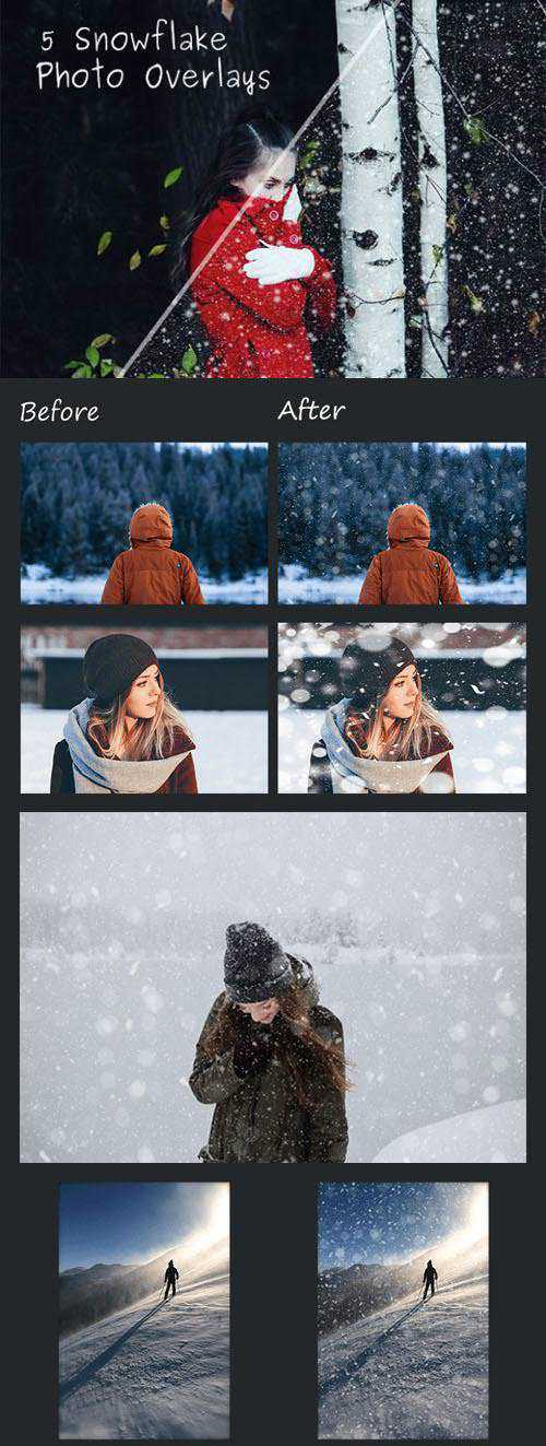 5 Snowflake Photo Overlays